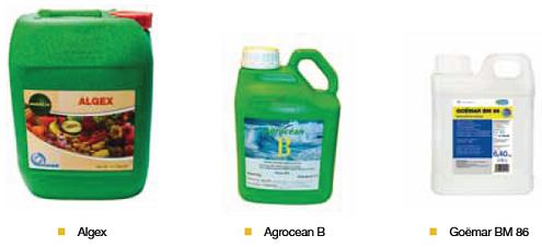 algex agrocean goemar