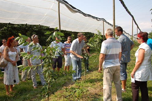 sadownicze grupy szkoleniowe doradztwo