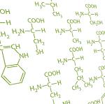 nawozy dolistne z aminokwasami nawozy skompleksowane aminokwasami