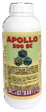 Apollo 500 SC