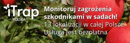 iTrap-Polska. Monitoruj zagrożenia szkodnikami w sadach!