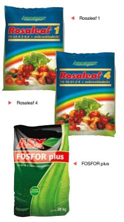 rosalea i asx fosfor plus