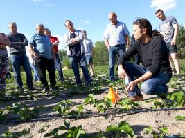 Michał Malicki - pobieranie roztworu glebowego (www.jagodnik.pl)