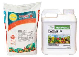 Rosasol-K / Metalosate Patassium