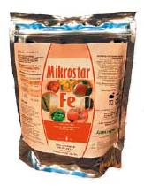 Mikrostar Fe