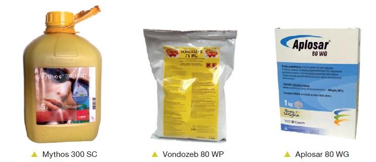 profilaktyka-srodki-cz-2